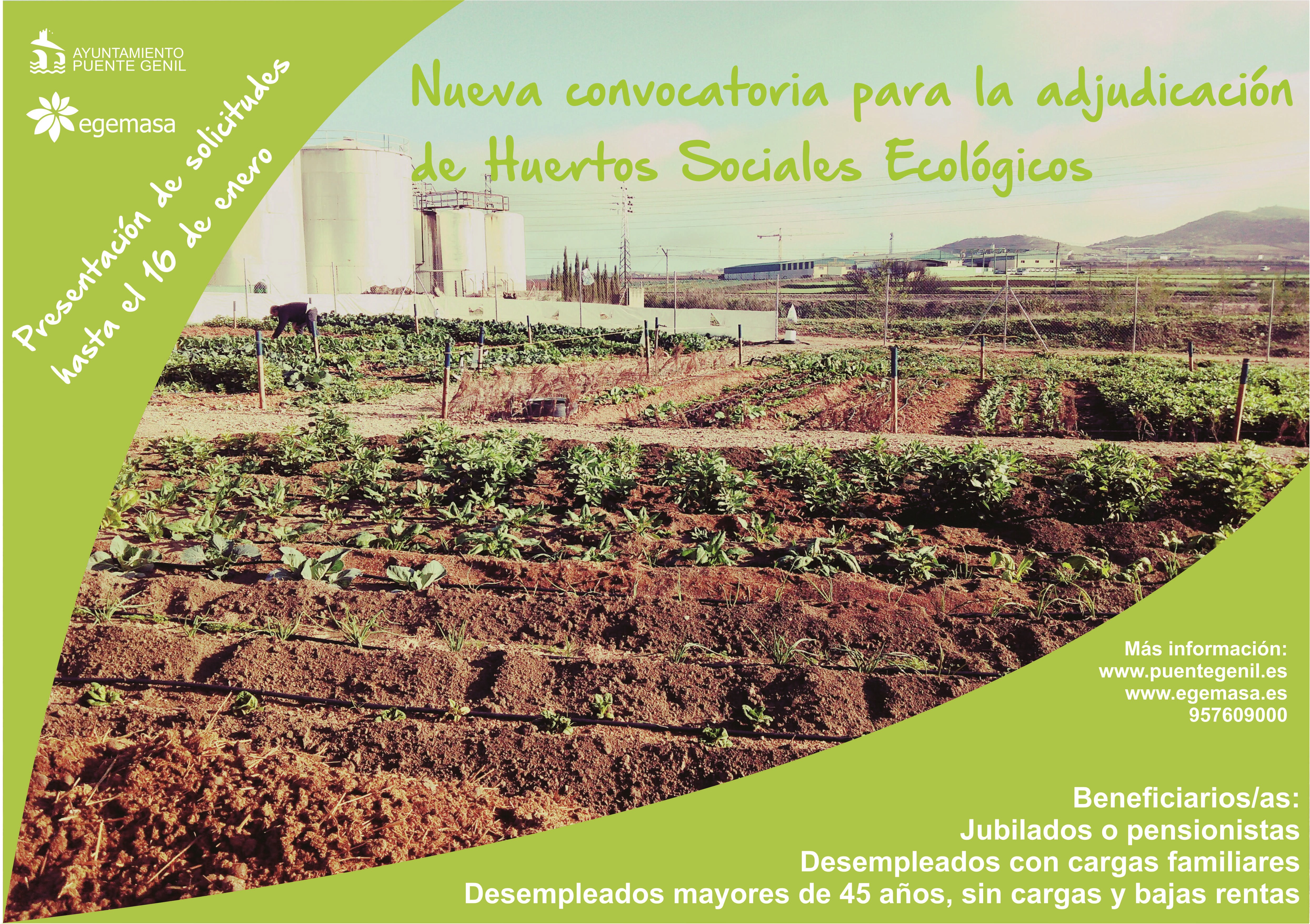 cartel 2 convocatoria huertos sociales (Copiar)